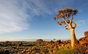 namibian-explorer-21334902-1407922361-ImageGalleryLightbox.jpg