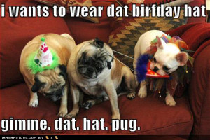 it's the punctuation: gimme. dat. hat. pug. it's become a bit of a