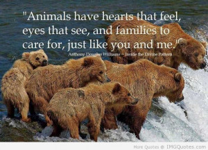 ... That See And Families To Care For Just Like You And Me - Animal Quote