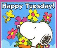 happy tuesday snoopy memes - photo #12