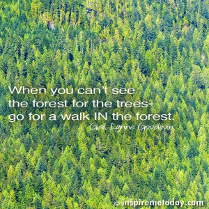 Quote-When-you-cant-see-the-forest.jpg