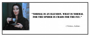 Normal is an illusion. What is normal for the spider is chaos for ...