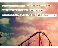 Life Roller Coaster Quote