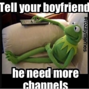 Caribbean News: [Frog Chronicles] Kermit The Frog Takes Over Social ...