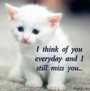 Karma Missing Pet Network - For More Inspiring and Love Quotes ...