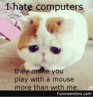 Funny Cat And Mouse...