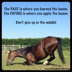 Quotes & Horses