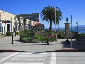 Cannery Row Movie