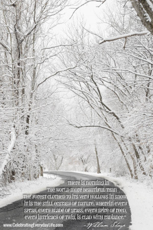 Snowy Road, Snow Scene, Snow in the Woods, Inspiring Snow Quote ...