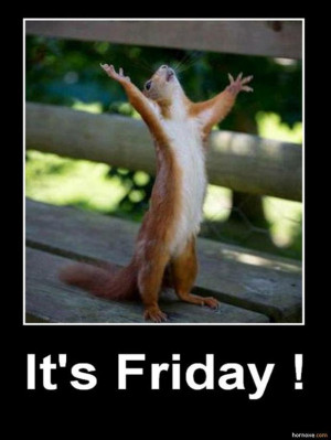 ... funny friday pictures it s friday 24 pics tgif thank god its friday