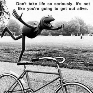 kermit frog truth quote life havefun livealittle