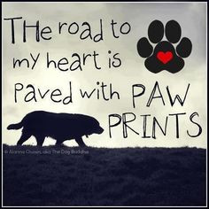 by dogs are family 20121017 more the roads dogs quotes cat pets my ...