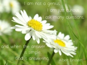 Simplicity quote by Albert Einstein