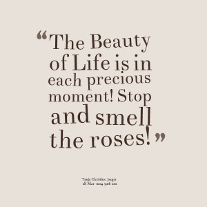 Quotes Picture: the beauty of life is in each precious moment! stop ...