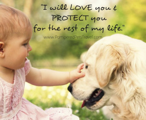 .com #dog #puppy #puppies #pet #pets #cute #dogs #quotes ...