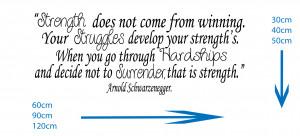 Arnold Schwarzenegger - Strength... Wall Sticker