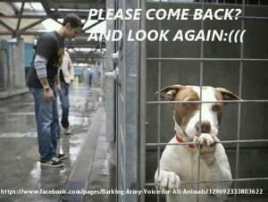 please help them!!