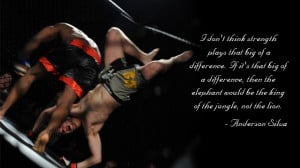 MMA Sayings http://www.thearenamma.com/great-quotes-mixed-martial-arts