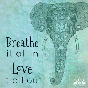 Elephant Quotes