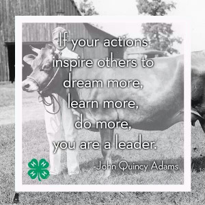 Used this quote in my 4-H speech on Leadership :)