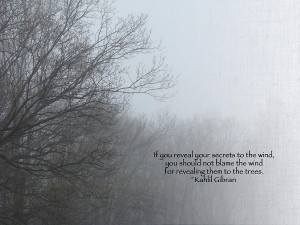 Trees And Fog And Khalil Gibran Quote Photograph