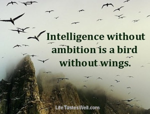 Ambition and love are the wings to great deeds. Johann Wolfgang Von ...