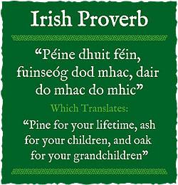 Irish Proverbs About Love Irish proverbs and sayings