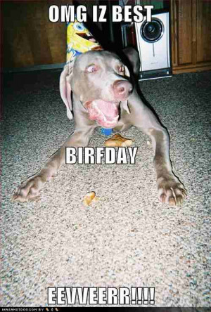 Funny Birthday Image