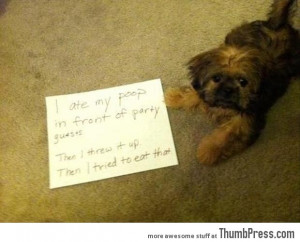 Funny Appropriate Dog Pictures Bad dog notes 1