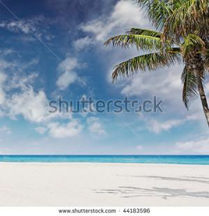 Beautiful Photo Tropical...