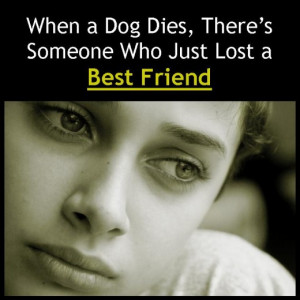 Pet Sympathy Messages: Condolences for Loss of Dogs, Cats, and Other ...