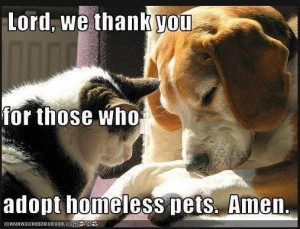 Thank you to all who adopt