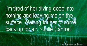 Quotes About Diving