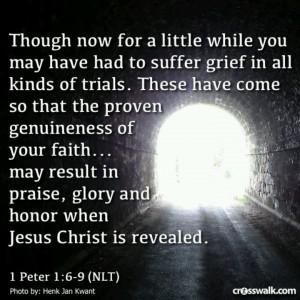 Peter 1:6-9