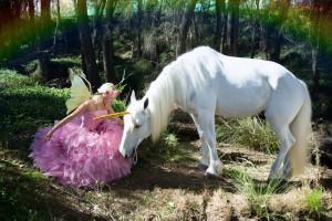Fairies And Unicorns...