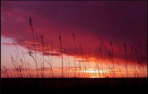 prairie sunset,sask