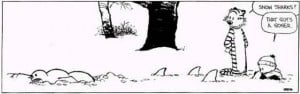 funny pictures, calvin and hobbes snow sharks