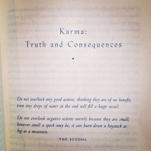 Karma: Truth & Consequences
