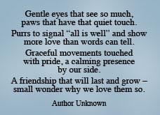 bereavement hickory pet inn understands that the loss of a pet is an ...