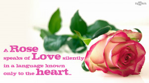 rose-love-quotes