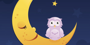 NIGHT-OWLS-SLEEP-facebook.jpg