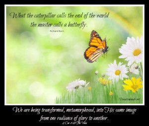 butterfly quotes about death
