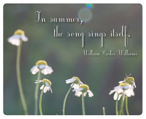 Beautiful Summer Quote