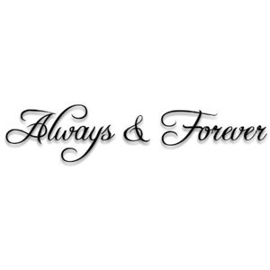 ALWAYS FOREVER Vinyl wall quotes and sayings love home lettering decal ...