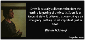 nothing is that important natalie goldberg quotes quotations