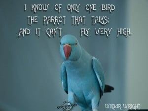 bird quotes sayings bird quotes and sayings quotes and sayings caged ...