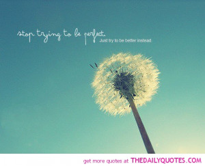 stop-trying-to-be-perfect-quote-pic-sayings-quotes-pictures.jpg