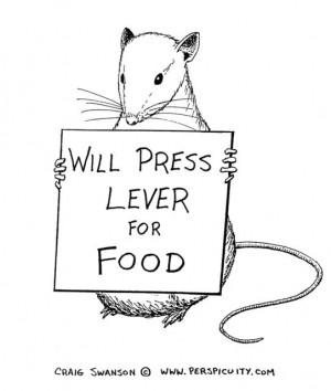 Psychology Skinner Rat