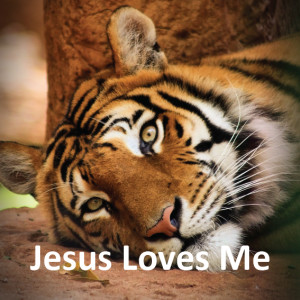 Jesus Loves me Quotes Bible Jesus Loves me Tigers