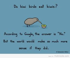 ... anyway which where the kiwi is from my kiwi aka my smarty pants fiance